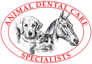 Animal Dental Care Specialists